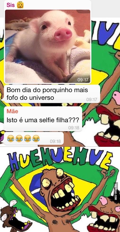 Selfie de porco... - meme