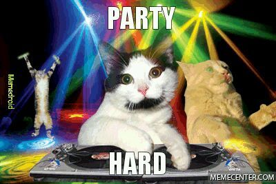 Party hard  Party hard Party hard - meme