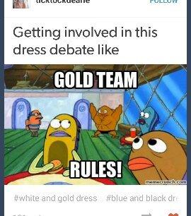 Gold team rules - meme