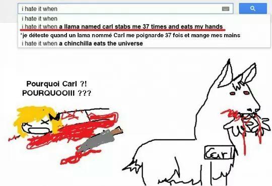 Je déteste quand un lama nommé Carl me poignarde 37 fois et mange mes mains , WTF - meme
