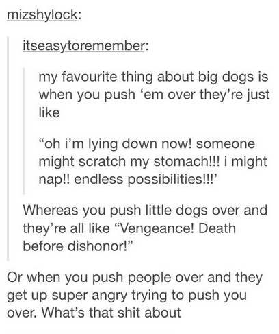 I like cats and dogs - meme