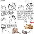 Et oui je me remet aux memes ! Et +1 pour les chats ?