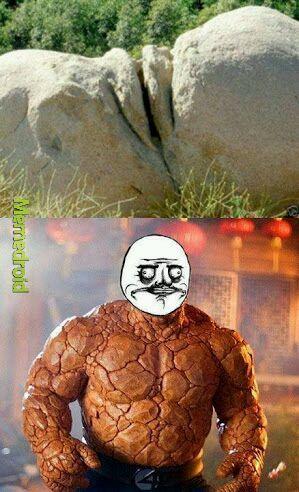Xoxota rochosa - meme