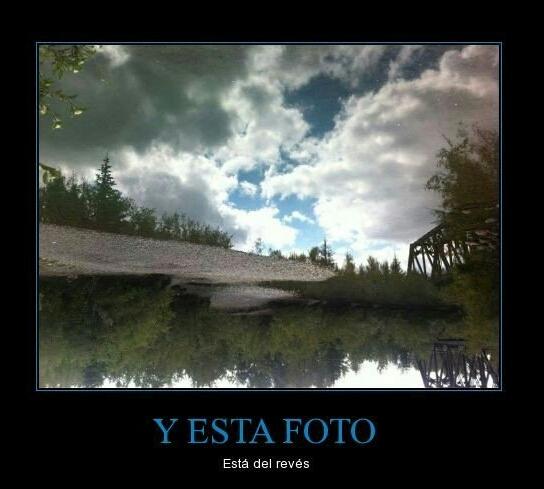Foto - meme