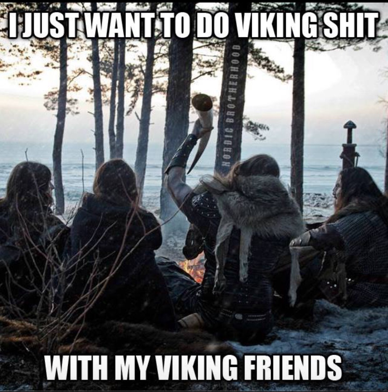 564fe5328ddd8 the best viking memes ) memedroid