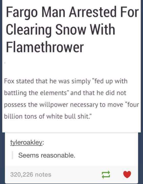 Fucking Winter - meme