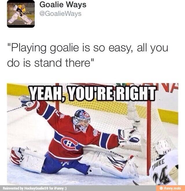 54ed6908ca0c2 hockey meme by the ninth doctor ) memedroid