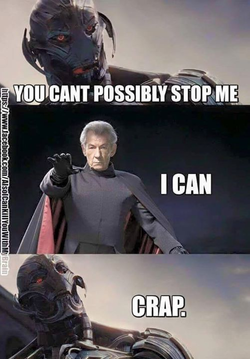 Ultron vs. Magneto - meme