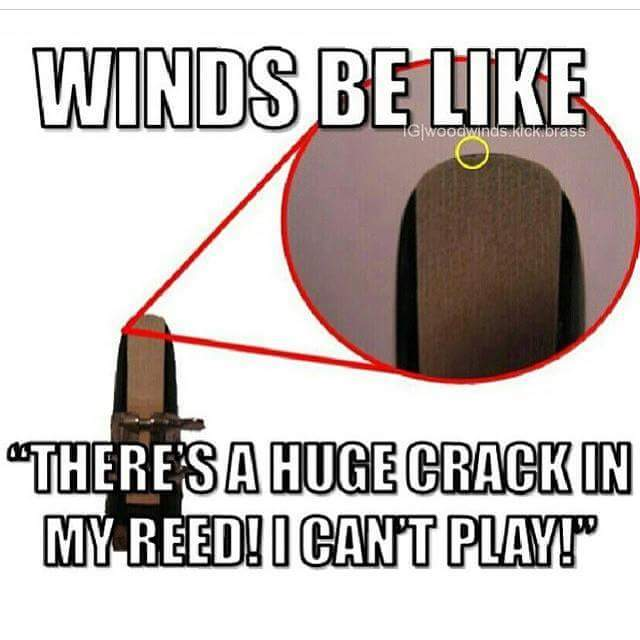 Woodwinds - meme