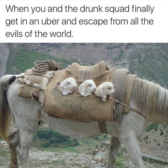 squad goals - meme