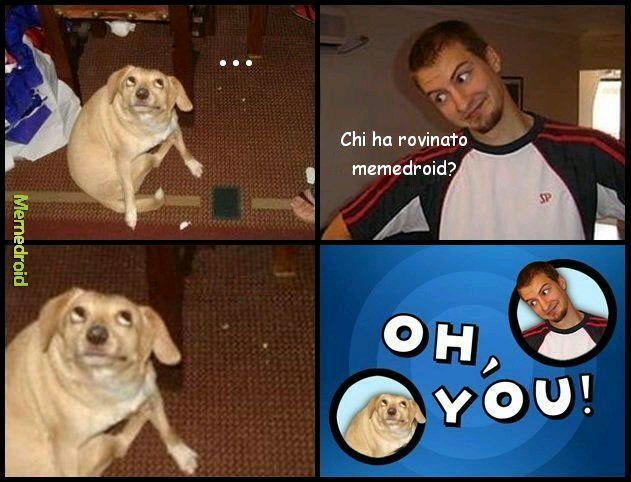 Memedroid sta cadendo a pezzi