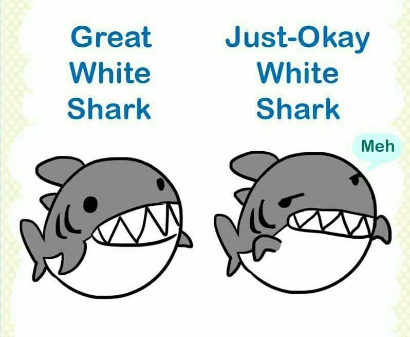 Great white sticky not shark ( ͡° ͜ʖ ͡°) - meme