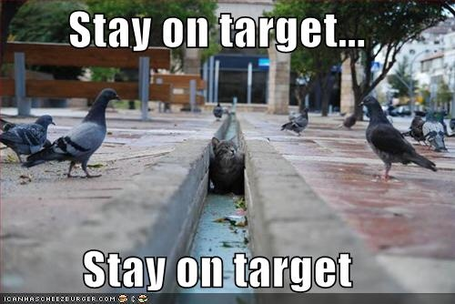 Target acquired! - meme