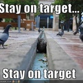 Target acquired!