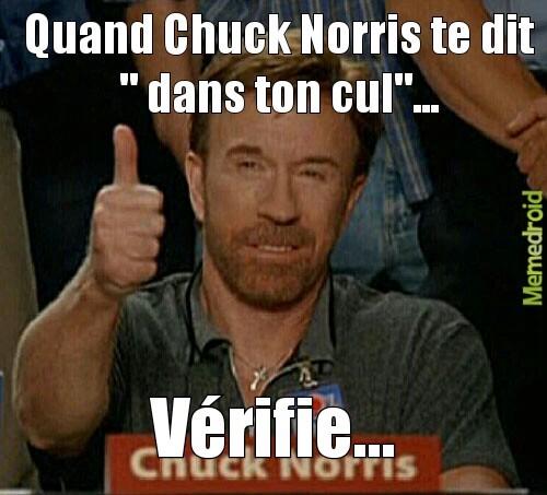 Chuck Norris fact - meme