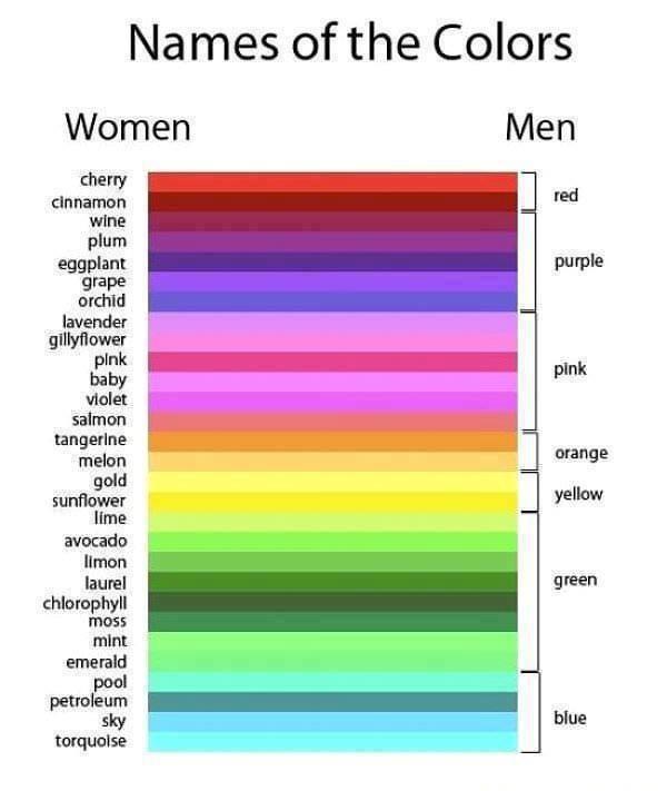 6 colours - meme