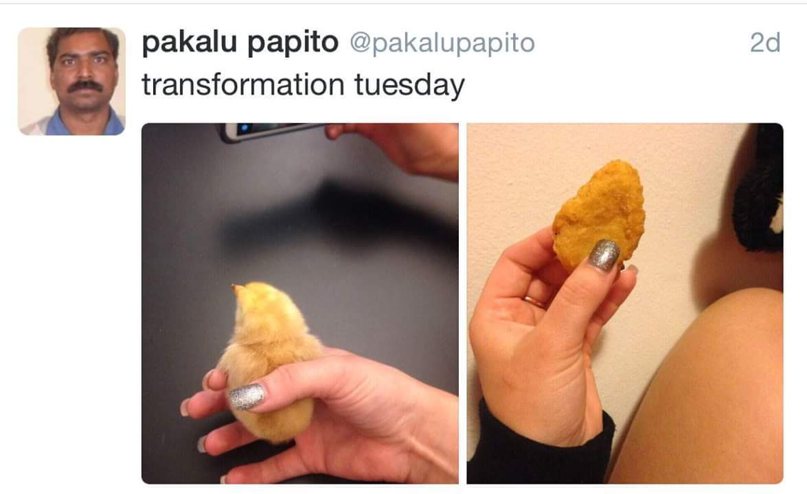 Transformation tuesday - meme