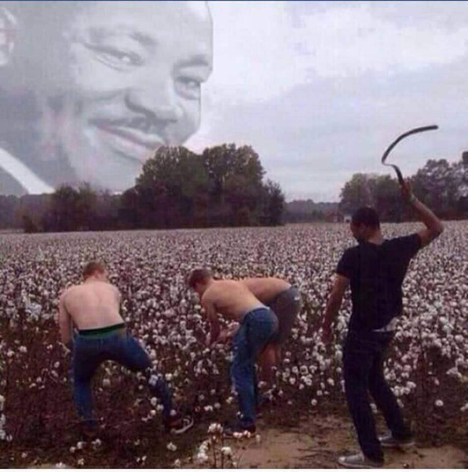MLK would be so proud - meme