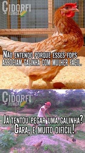 galinha é para os fracos - meme
