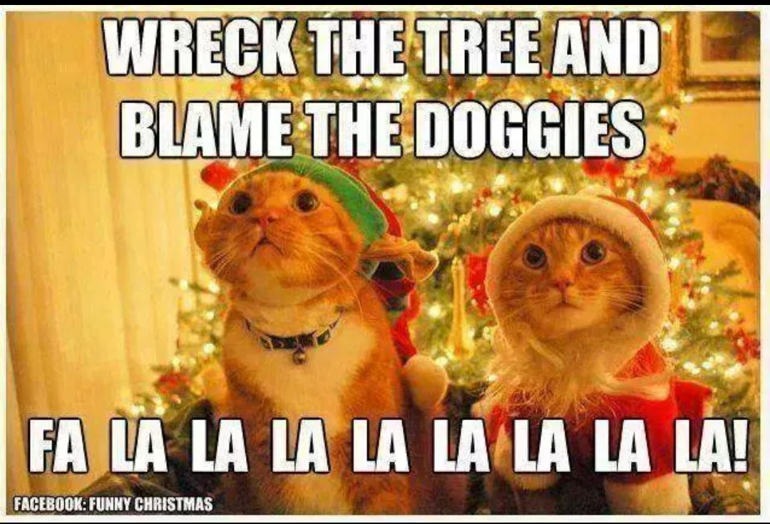 Funny Merry Christmas Meme : Merry christmas guys meme by cee memedroid