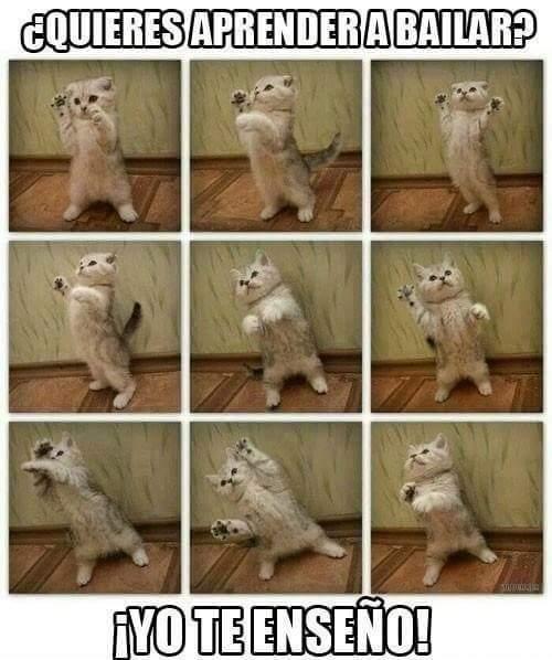 Bailar - meme