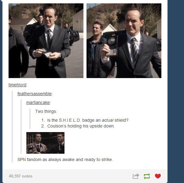 dammit Coulson - meme