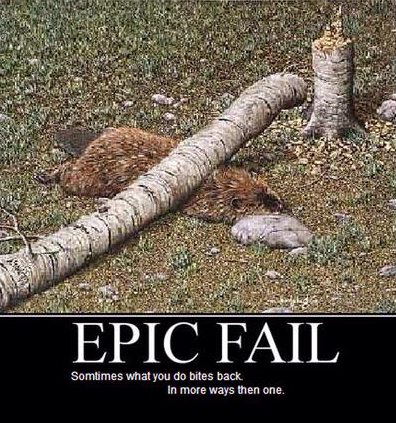 Epic fail - meme