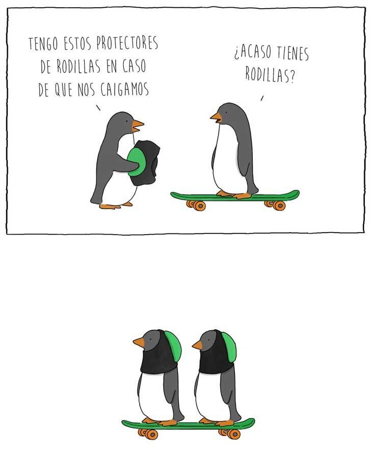 Pingüinos :) - meme