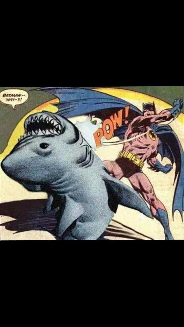 não bata em tubarões - meme