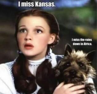 Anybody like Kansas? - meme