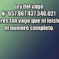 LEY DEL VAGO