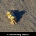 Batman is hiding well