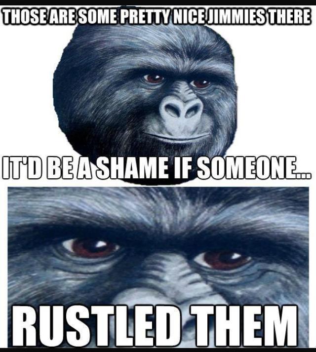My jimmies remain rustled - meme