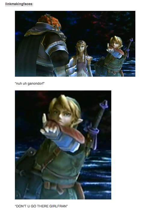 A Link To The Sass - meme