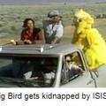 Bird man whyyy