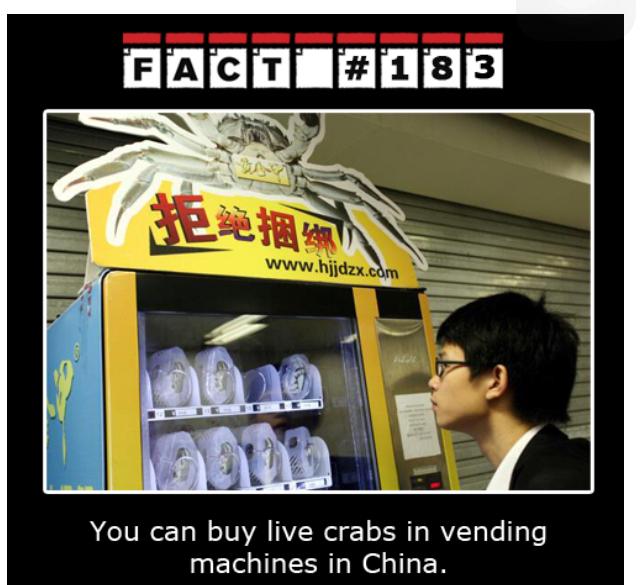 Wow China - meme