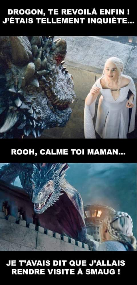 Drogon et Smaug à la poursuite de l'or nain - meme