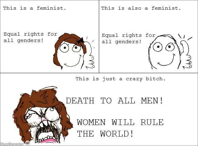 Also known as feminazi - meme