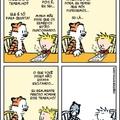 fim de Calvin