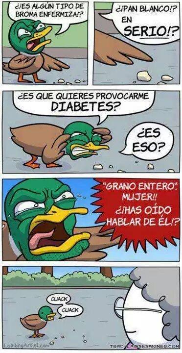 Pato rebelde - meme