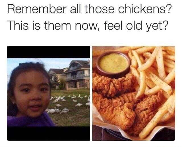 Mmm chicken - meme