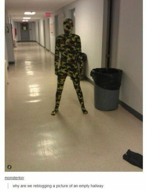Total camouflage - meme