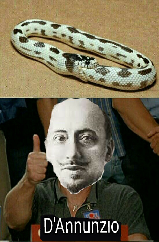 D'annunzio approves - meme