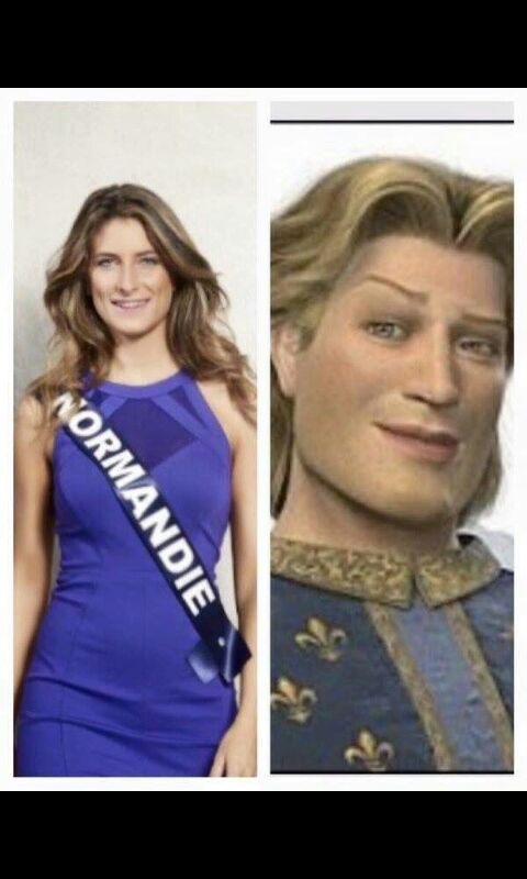 Miss Normandie  - meme