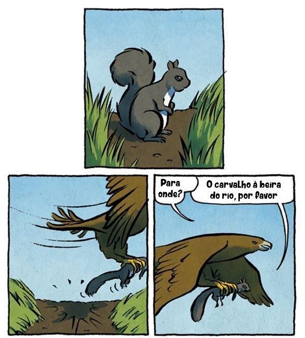 taxi animal - meme