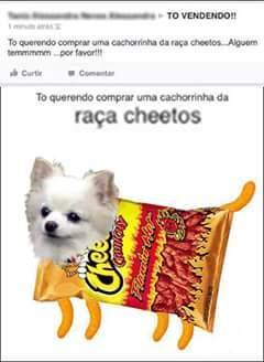 Cheetos - meme