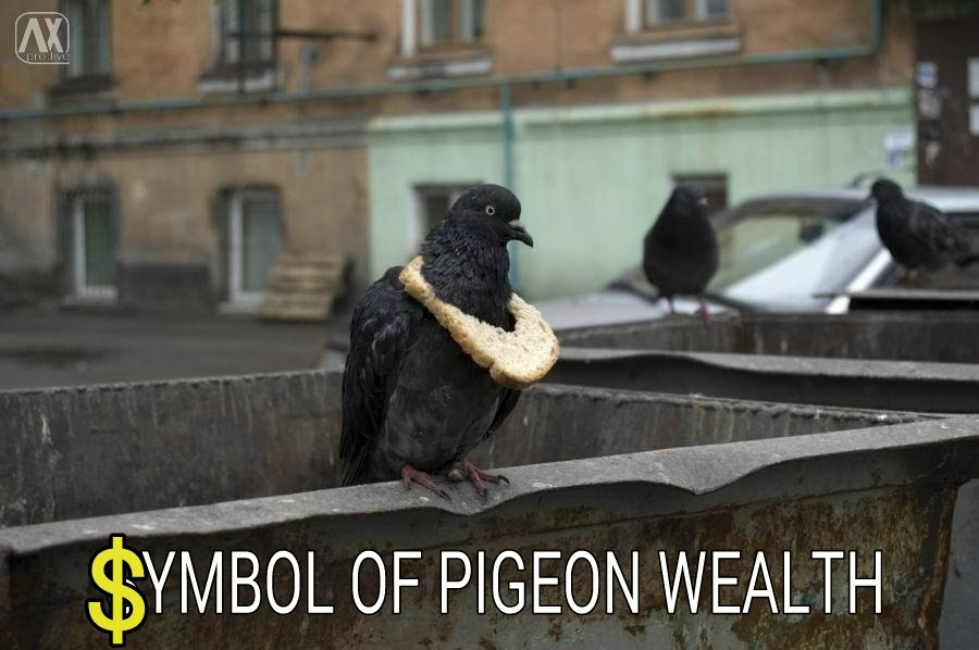 Do$$ar Do$$ar Pigeon in da house! - meme
