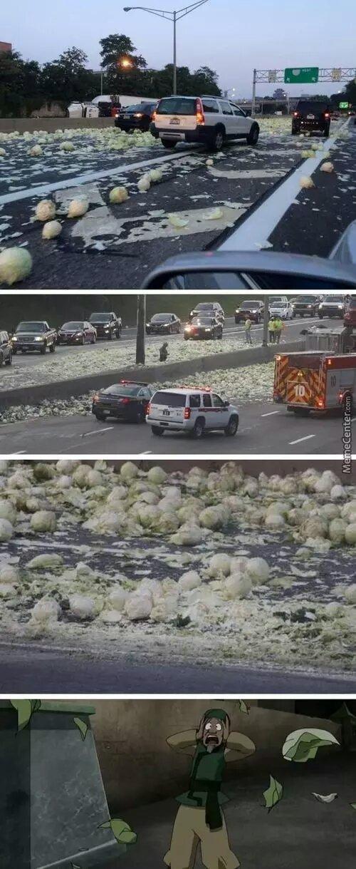 cabbage cabbage everywhere - meme