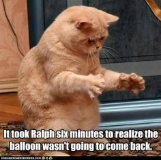Sad,sad Ralph - meme
