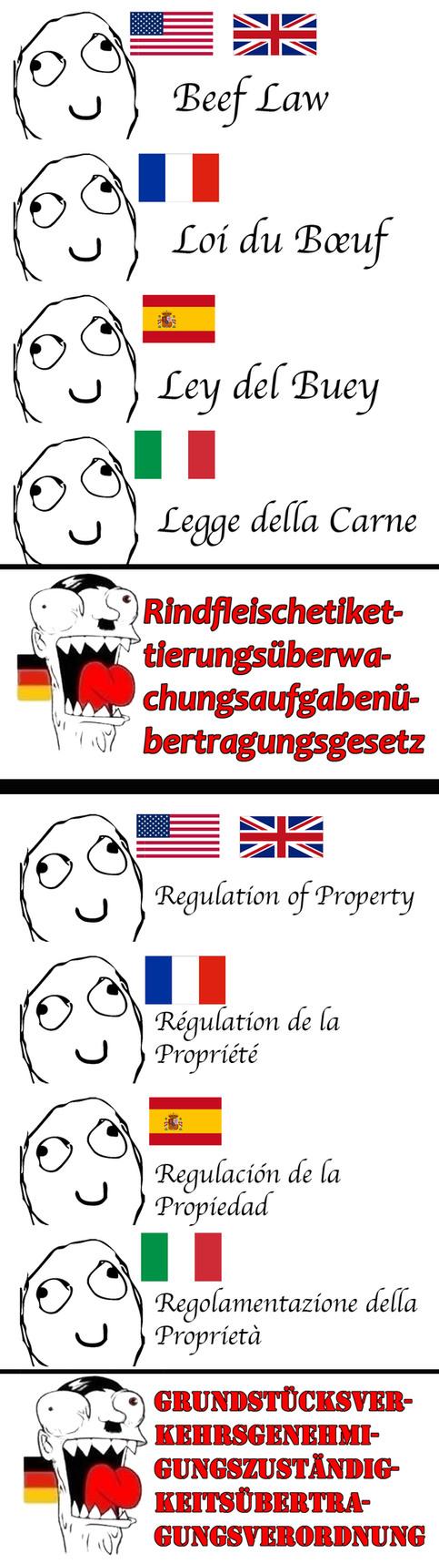 German can be crazy - meme